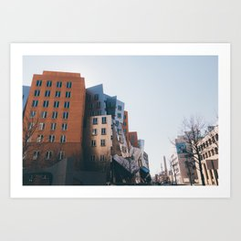 Ray and Maria Stata Center Art Print