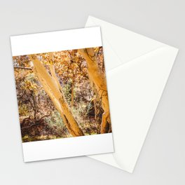 Trees in Arizona Stationery Cards