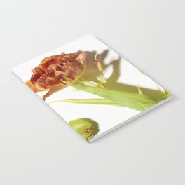 Bud & Bloom Notebook