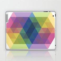 Fig. 030 Laptop & iPad Skin