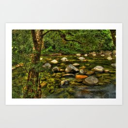 Majestic Mossman Gorge Art Print