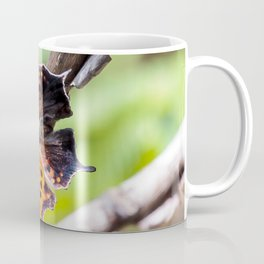 Eastern Comma Butterfly Landscape with Art Filter Coffee Mug