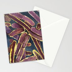 BACILLI Stationery Cards