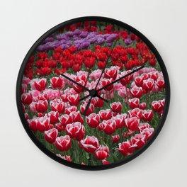 Dutch tulips Wall Clock