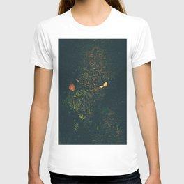 Someone Killed This Mushroom T-shirt