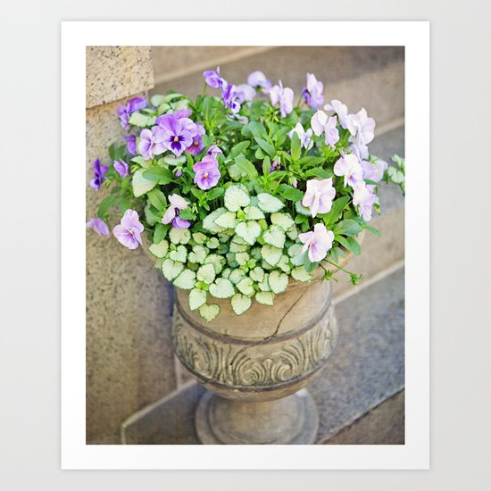 Purple Flowers Alongside Stoop Art Print