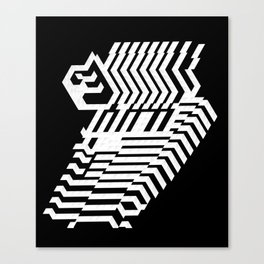 The zz Canvas Print