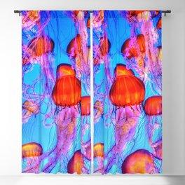 Jellyfish Blackout Curtain