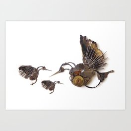Rad's Hummingbirds Art Print