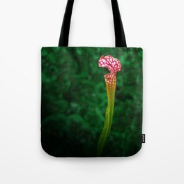 Pitcher Plant Rising Tote Bag