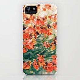 Echinacea flower field iPhone Case