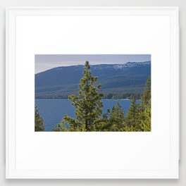 Trees + Tahoe II Framed Art Print