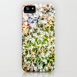 Constellation Top Shelf Bud Diamond OG Strain Trichomes Close Up View iPhone Case
