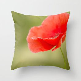 Miss you so much Red Poppy  Throw Pillow