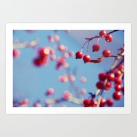 Red and Blue Spring Art Print