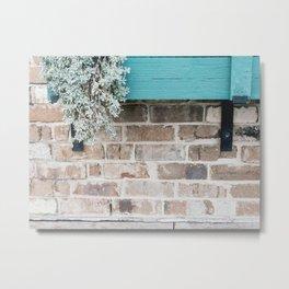 Plant on Bricks Metal Print