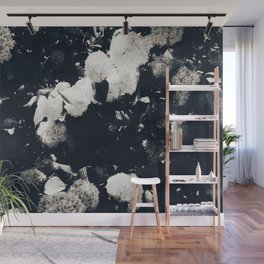 High Contrast Black and White Snowballs II Wall Mural