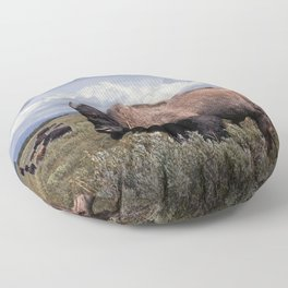 American Buffalo or Bison in the Grand Teton National Park Floor Pillow