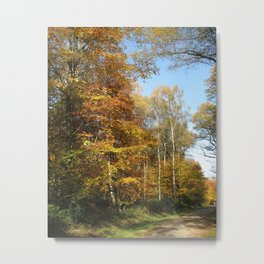 Autumnal Path Metal Print