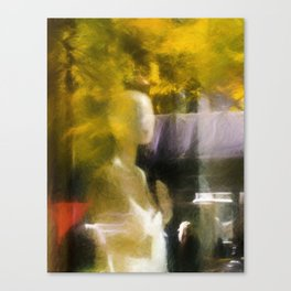 In the Window Canvas Print