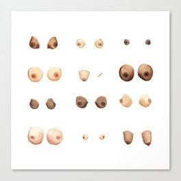 Boobies. Canvas Print