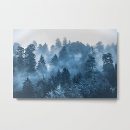 Blue Forest Melody  - 18/365 Metal Print