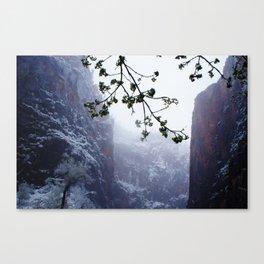 Secret Snow Mountain Canvas Print