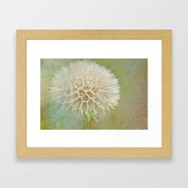 Dandelion Daydream Framed Art Print