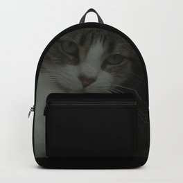 through the looking glass - cat meditating at the window Backpack