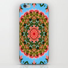 Mandala - Paradise iPhone & iPod Skin