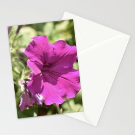 Summer Petunia Stationery Cards
