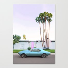 Palm Springs Pink Door Canvas Print