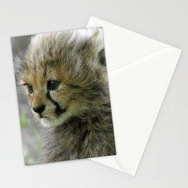 Cheetah 008 Stationery Cards