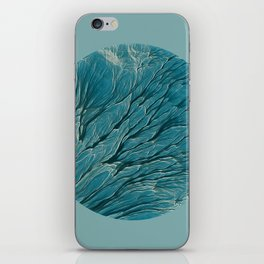 Meditations - Earth iPhone Skin