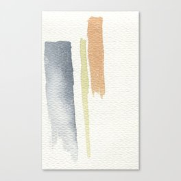 tri-color Canvas Print