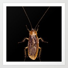 Bedazzled Roach Art Print