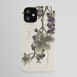 Minhwa : Grapevine Type C (Korean traditional/folk art) iPhone Case