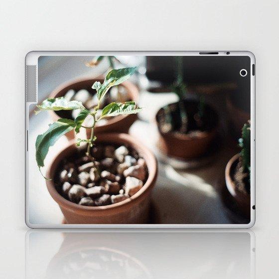 planter Laptop & iPad Skin