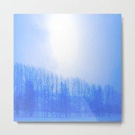 Winter 7 Metal Print
