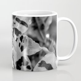 Leopard Orchid black and white Coffee Mug