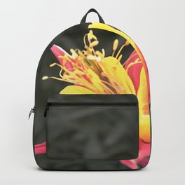 Aphrodity's Heart Backpack