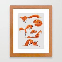 Fox poses Framed Art Print