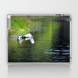 Great Blue Heron in flight, Trojan pond, near Goble, Oregon 3 Laptop & iPad Skin
