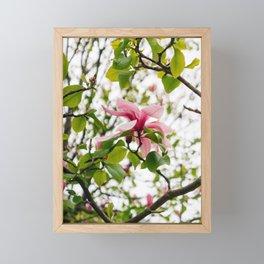Paris Garden VII Framed Mini Art Print