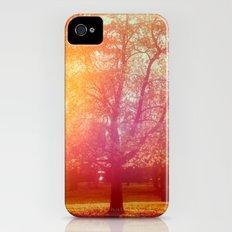 Public Gardens iPhone (4, 4s) Slim Case