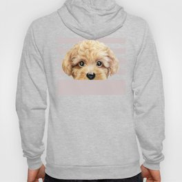 Toy poodle Dog illustration original painting print Hoody