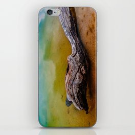 Drifting in a colorful world iPhone Skin