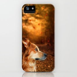 Golden Retriever Dreams iPhone Case