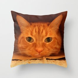 Cat in a Bag Throw Pillow