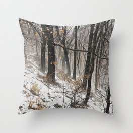 Winter at the park Throw Pillow